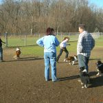 Rhadine, Bill, Amy, and lots of Shelties
